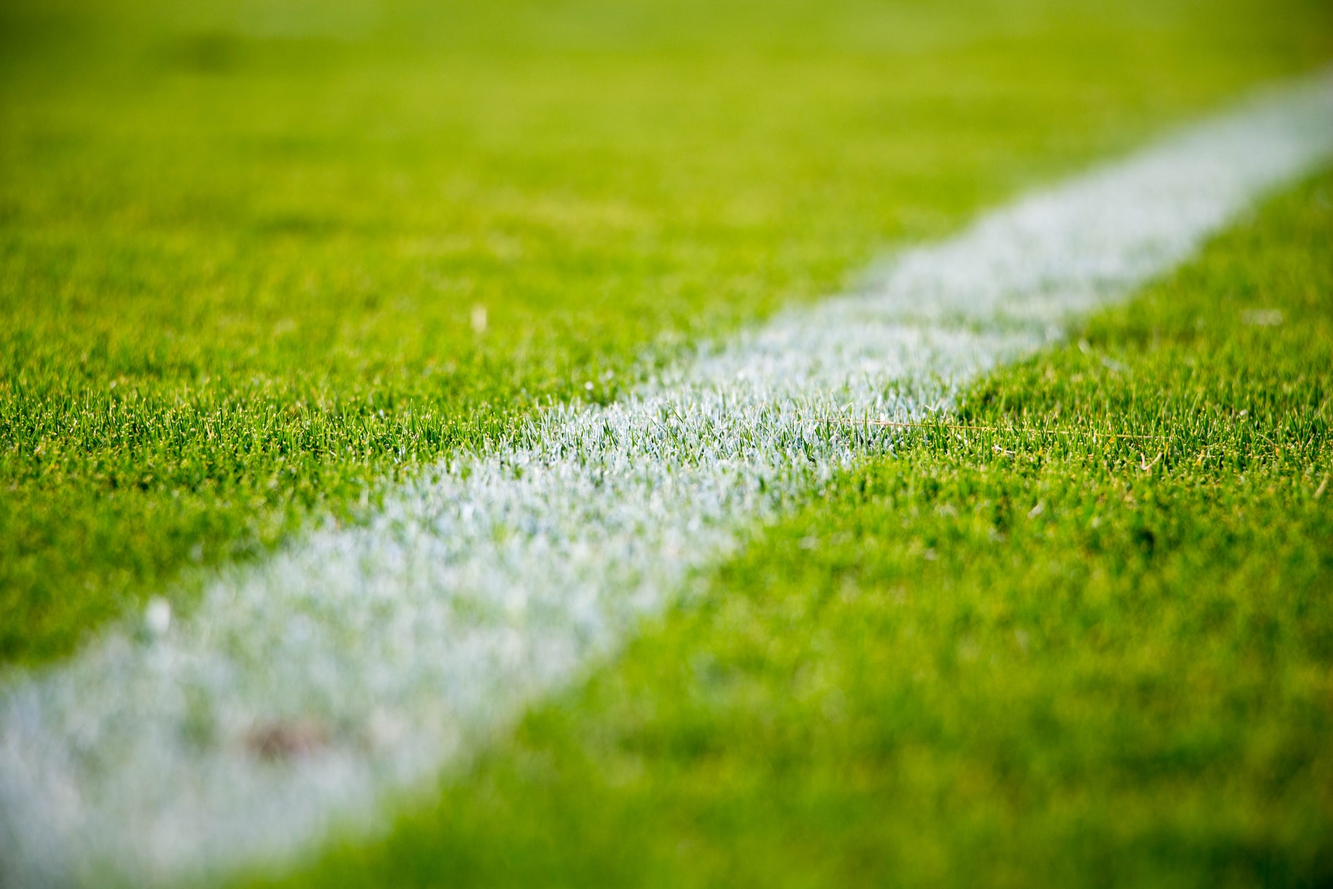 A close up image of a white-painted line of a bright green pitch.