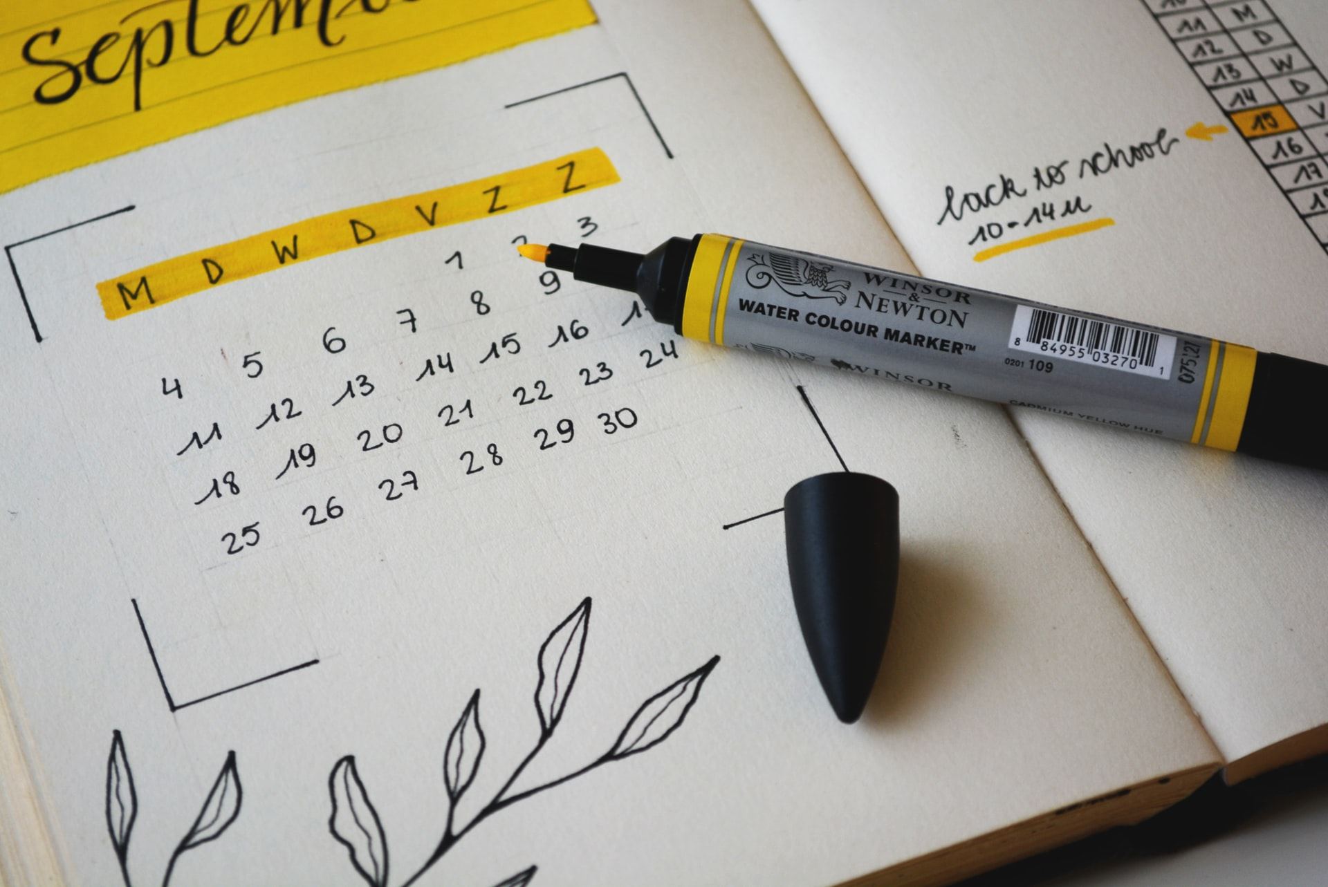Here we can see a calendar with a drawing of a plant and a yellow highlighter