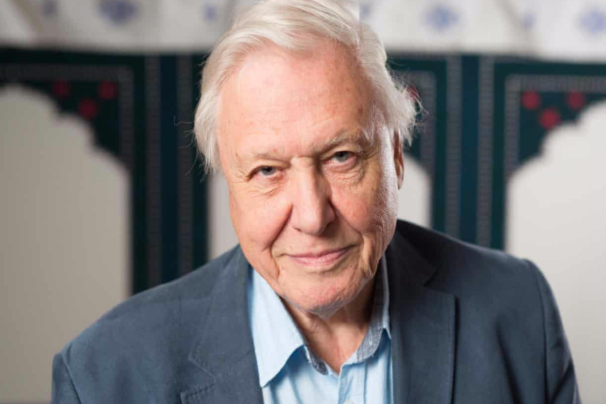 This image shows Sir David Attenborough smiling at the camera. He is wearing a light blue button up shirt with a grey blazer.