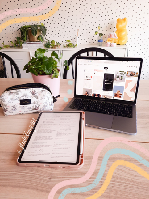 In this mage, Fleur is the one taking the photo of her work station. On the table is a grey laptop, open. Also on the table is her iPad and a pencil case. Behind the pencil case is a potted green plant.