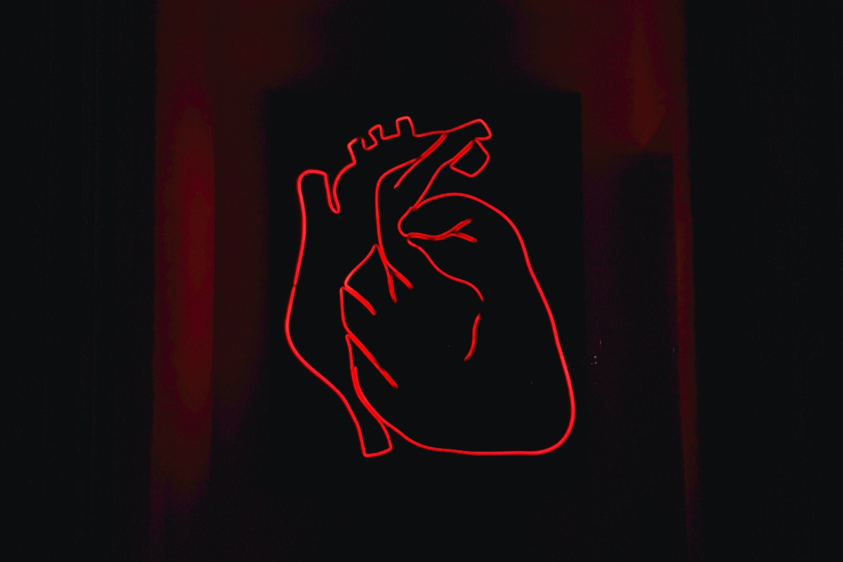 This image shows LED thin lights shaped as a heart and hands.