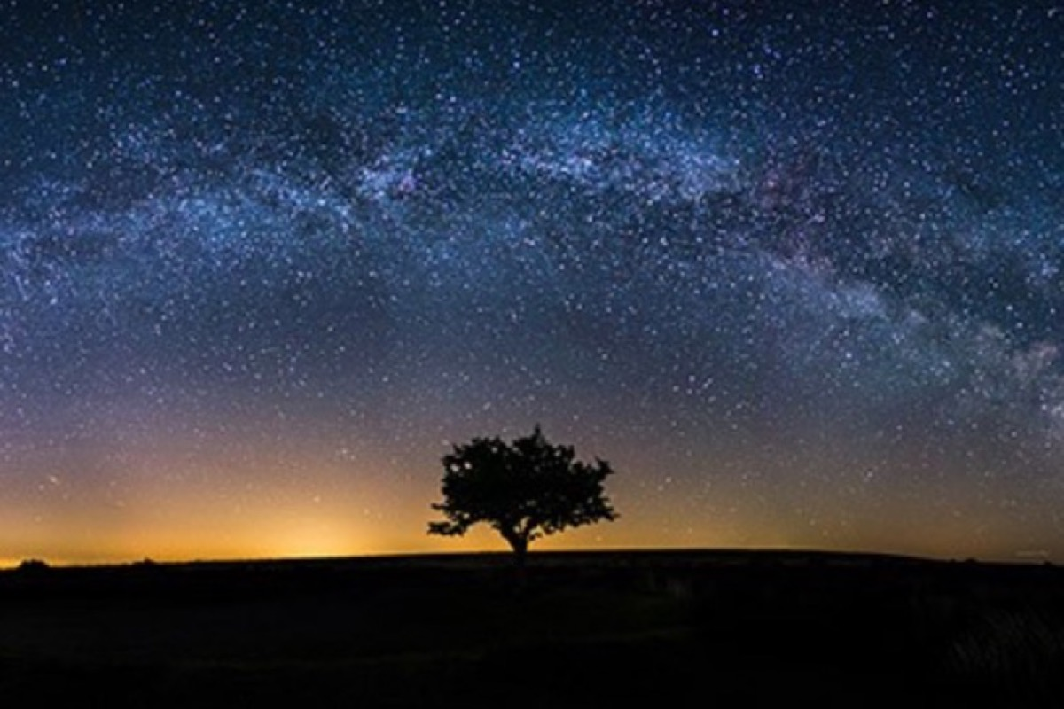 This image shows Exmoor National Park at night. This image shows an array of stars in the sky as well as a tree in the middle of the horizon.