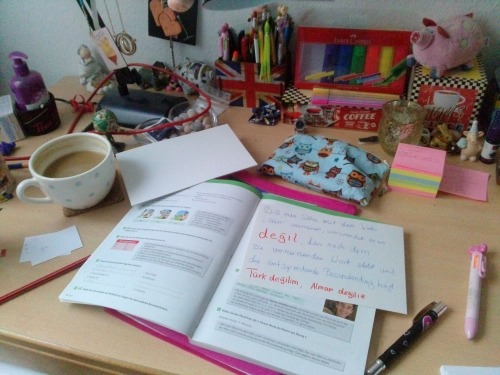 This image shows Rosa's desk. On the desk is a variety of stationary, an open textbook and some desk accessories.