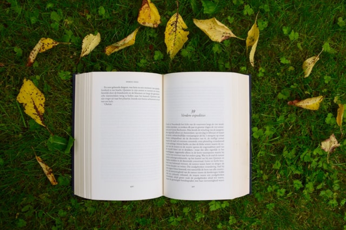 In this image, a book is open on a new chapter. The book is resting on the green grass with some leaves surrounding it.