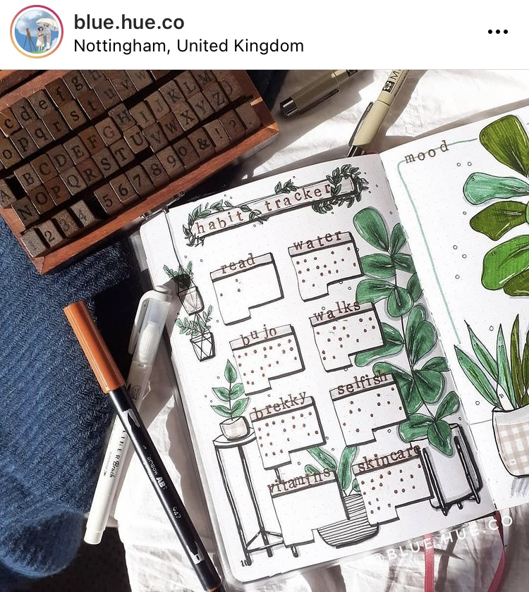This image is a photo from Rachel's Instagram. It is an image of a habit tracker she has drawn in her bullet journal. The page is decorated with hand drawn, dark green house plants.